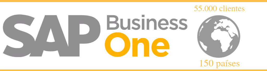 elegir sap business one